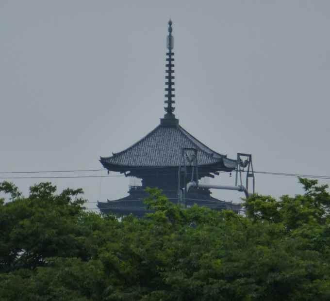 京都水族館から見える五重塔